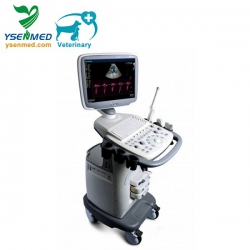 SonoScape S11V Price - SonoScape Trolley Color Doppler Ultrasound System S11v