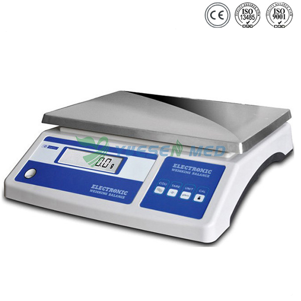 Stainless Steel High Performance Anatomy Scale
