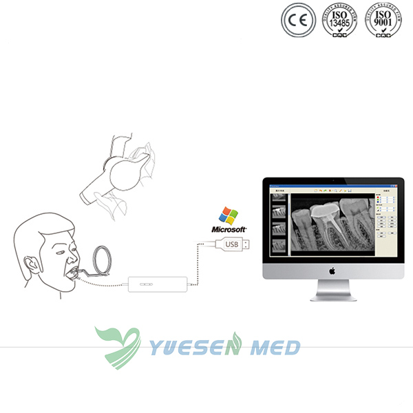Digital Dental X-ray Sensor RVG Instrument YSDEN-500
