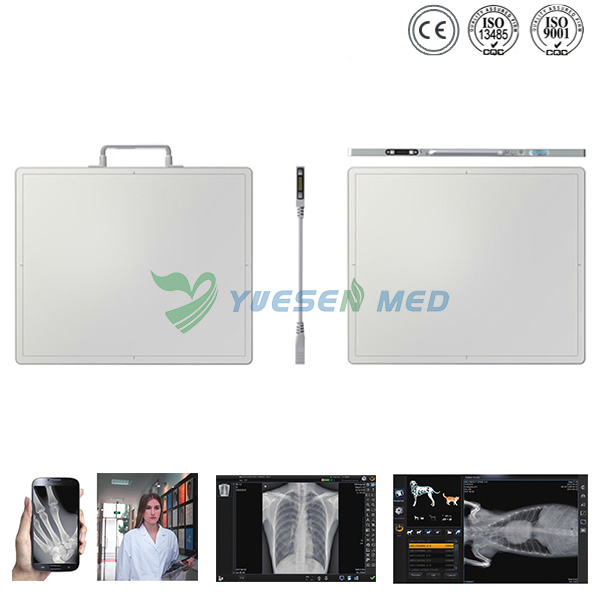 Digital X-ray Detector - Digital Radiography Flat Detector