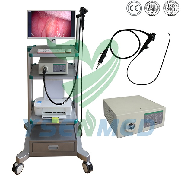 Veterinary Video Endoscope System YSNJ-1